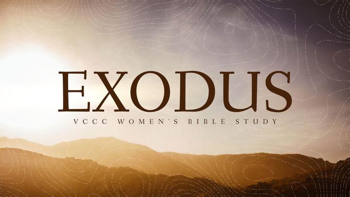 Women's Bible Study - Exodus Part 1 logo image