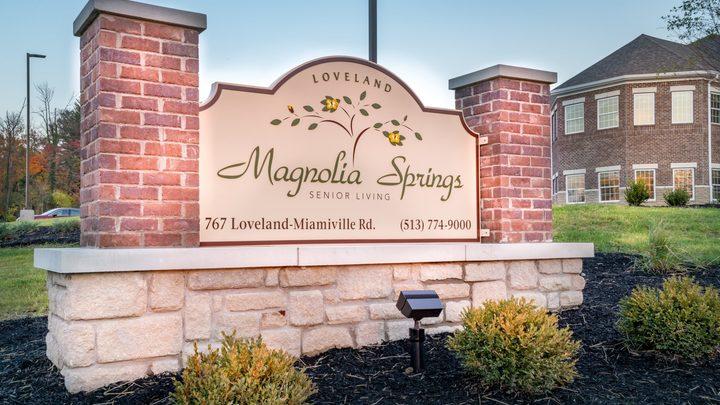 Magnolia Springs Volunteers logo image