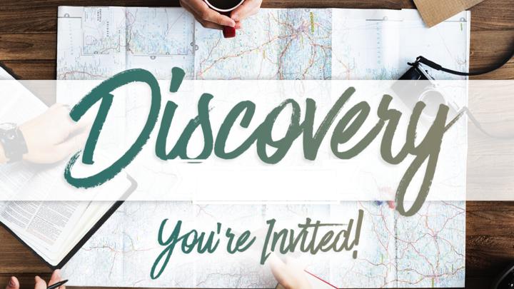 Discovery 101 logo image