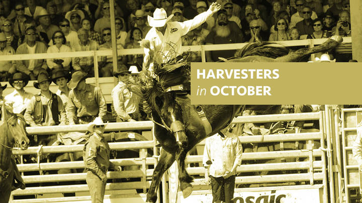 Harvesters - Arcadia Rodeo logo image