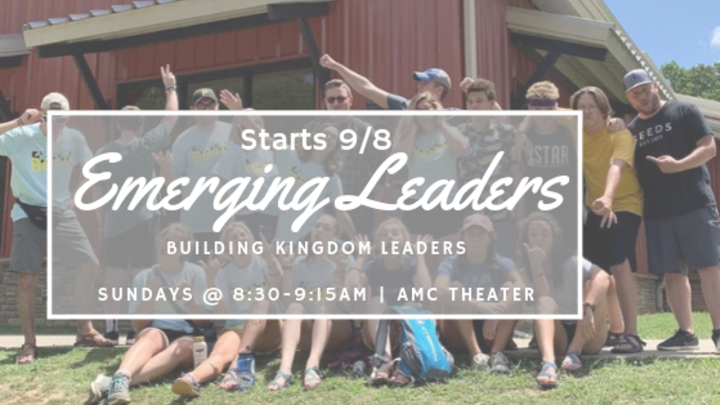 Youth Emerging Leaders Program: 9th-12th Grades logo image