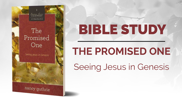 Trinity Women - The Promised One - Seeing Jesus in Genesis  Bible Study at Princess Anne Campus logo image