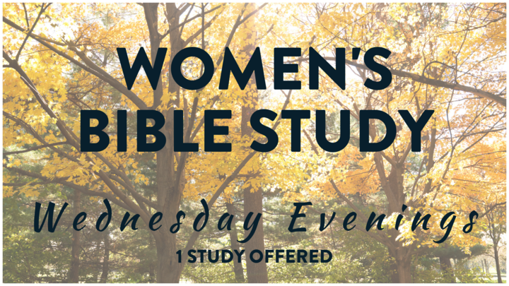 Women's Group - EVENING EDITION (Wednesday Evening Bible Study) logo image