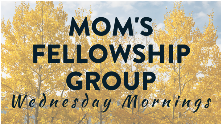 Women's Group - MOM TO MOM (Wednesday Morning Mom's Group) logo image