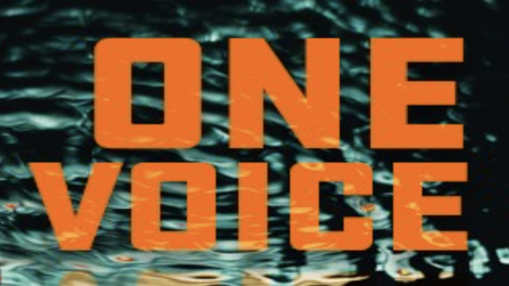 One Voice logo image