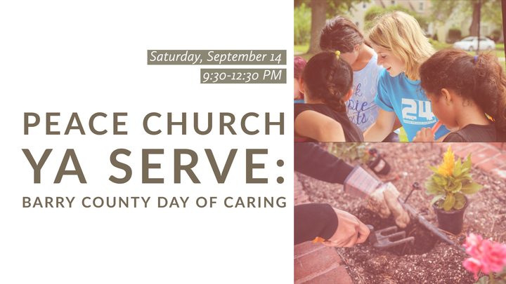 YA SERVE: Barry County Day of Caring logo image
