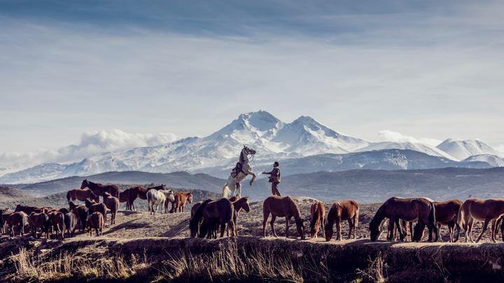 Central Asia Evangelism Trip logo image