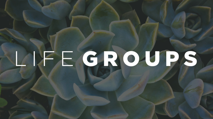 Life Group Launch Event logo image