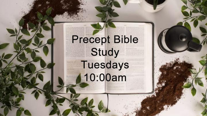 Women's Precept Bible Study logo image