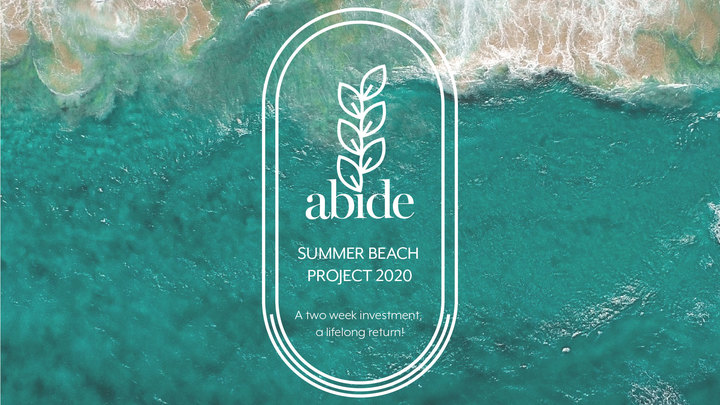 Summer Beach Project logo image