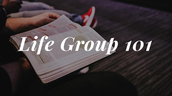 Life Group 101 (November 2019) logo image