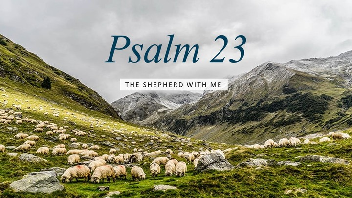 Ladies' Bible Study - Psalm 23: The Shepherd With Me logo image