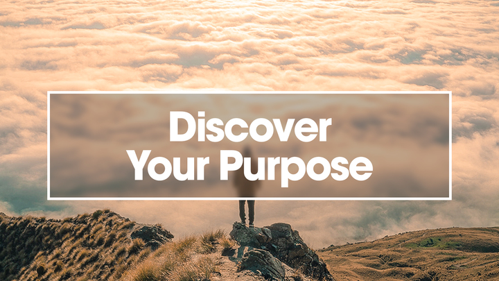 Discover Your Purpose logo image