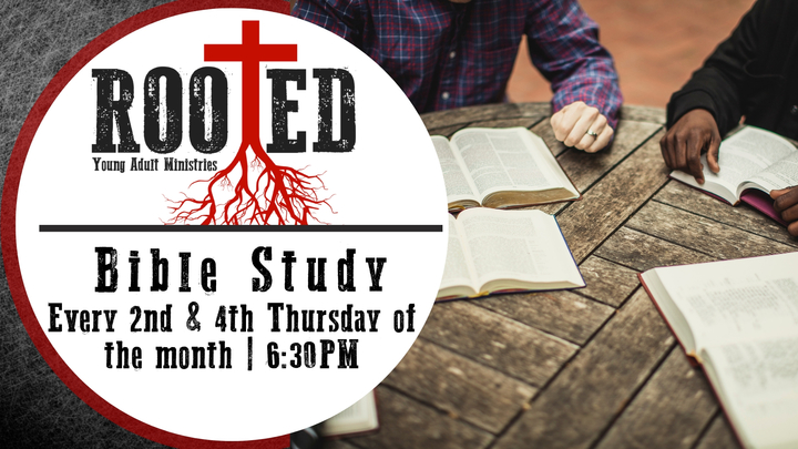 Rooted: Bible Study - Ages 18-30 logo image