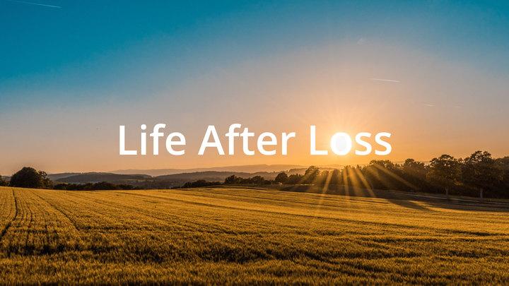 Life after Loss logo image