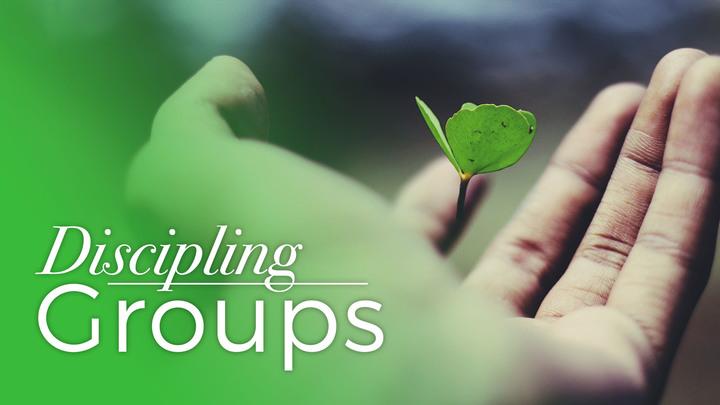 Discipling Groups logo image