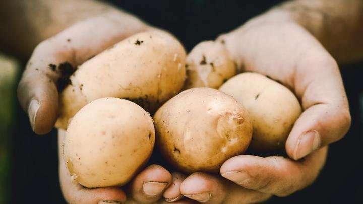 Potato Bar Dinner logo image