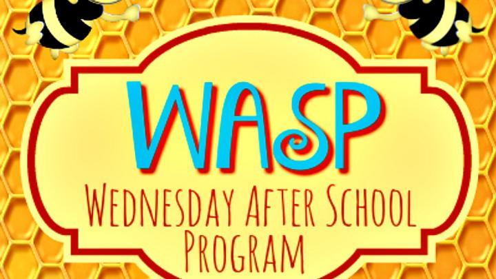 WASP logo image