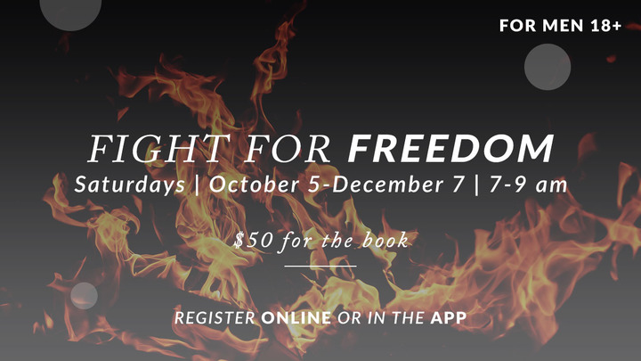 Fight for Freedom logo image