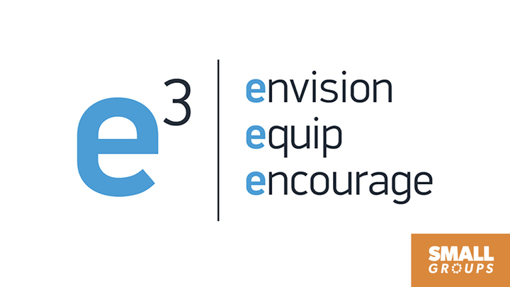 E3 June 2020 logo image