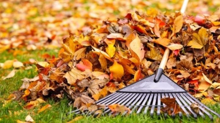 Fall Fix-It Serve Day logo image