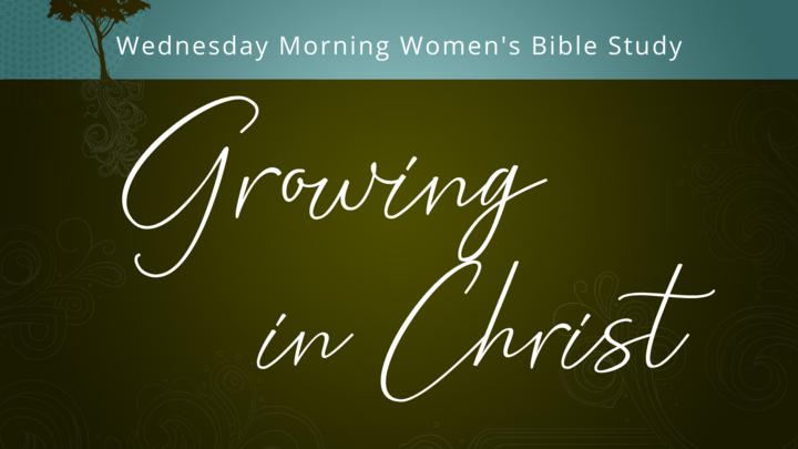 Women's Wednesday Morning Bible Study logo image