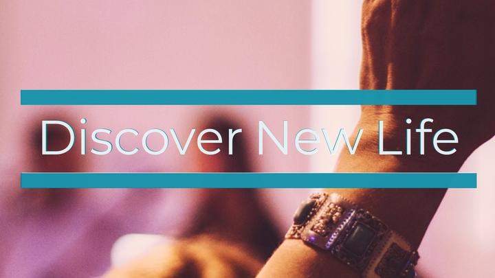 Discover New Life logo image
