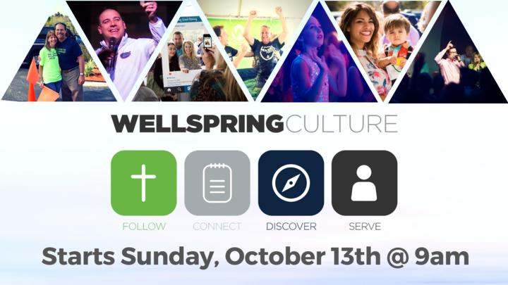 Wellspring Culture logo image