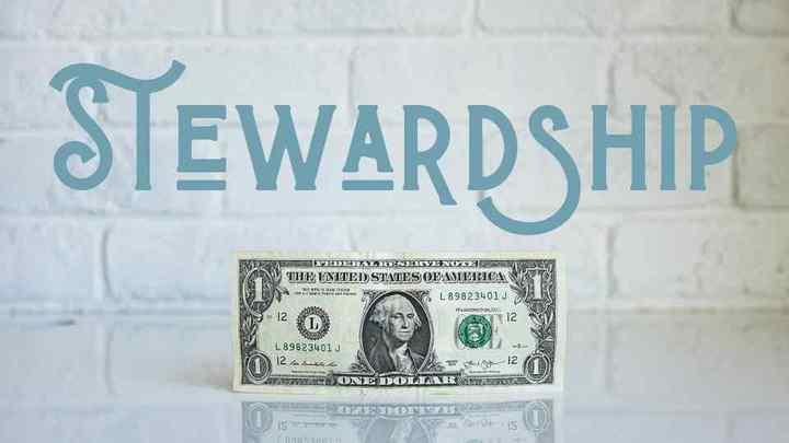 Life Class - Stewardship logo image