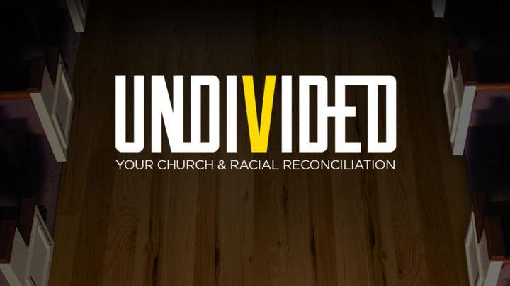 Undivided logo image