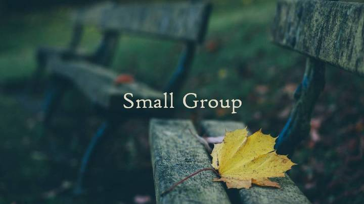 Small Group Leadership Course Wednesdays @ 7pm @ the Smiley's logo image
