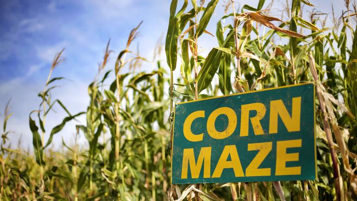 Parkwood Youth Corn Maze logo image