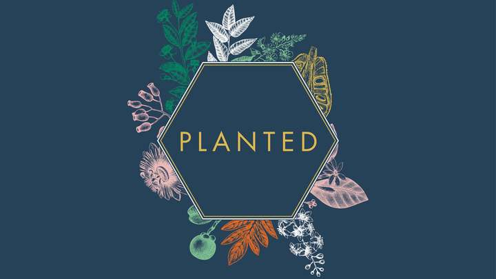 PLANTED: A Retreat for Women logo image