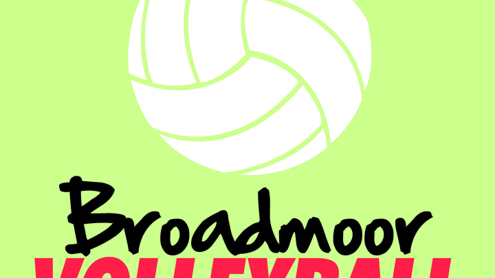 2019 Fall Coed Volleyball League logo image
