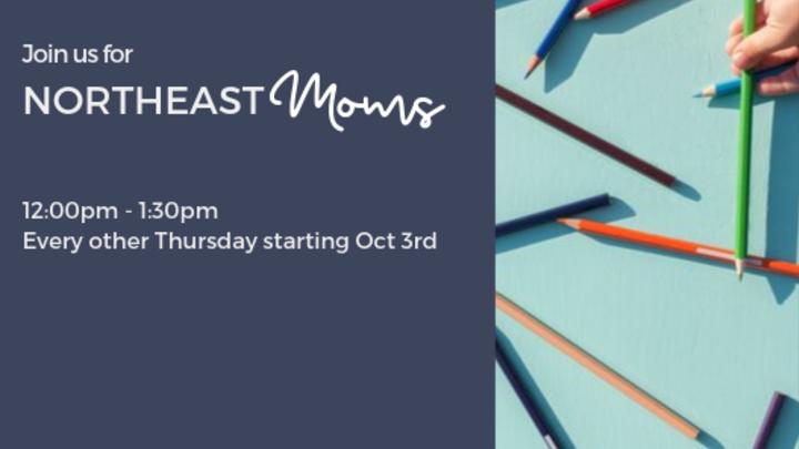 Northeast Moms logo image