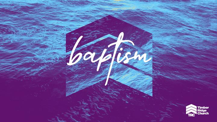 Baptism Celebration at Timber Ridge logo image