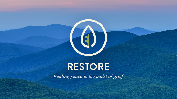 Restore logo image