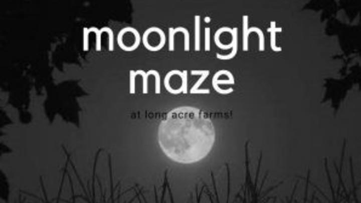 FRIDAY NIGHT IGNITE: MOONLIGHT MAZE logo image