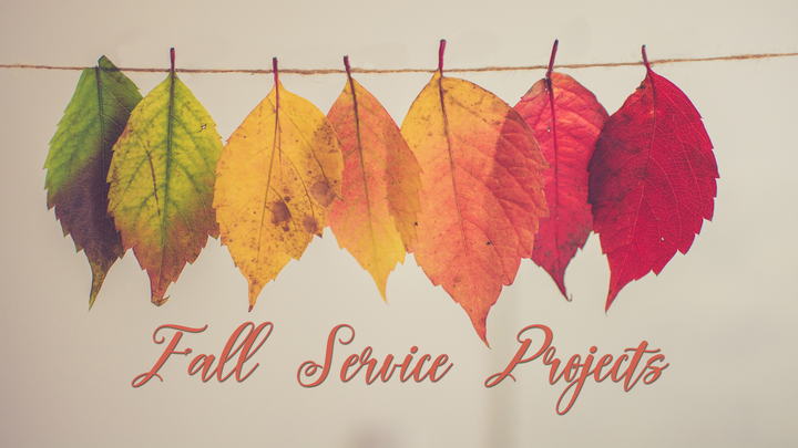 Fall Serve Projects logo image