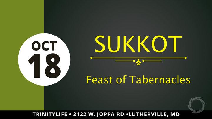 Sukkot logo image