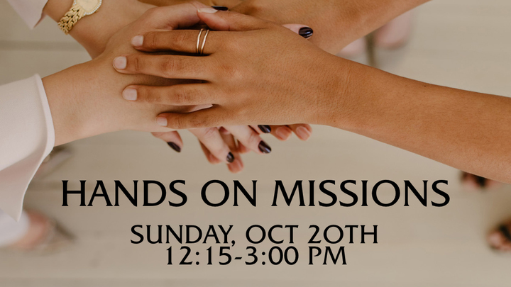 HANDS ON MISSIONS  logo image