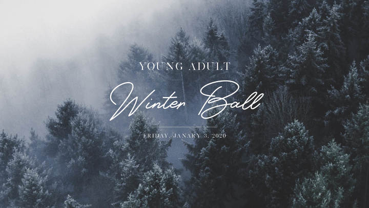 Young Adult Winter Ball logo image