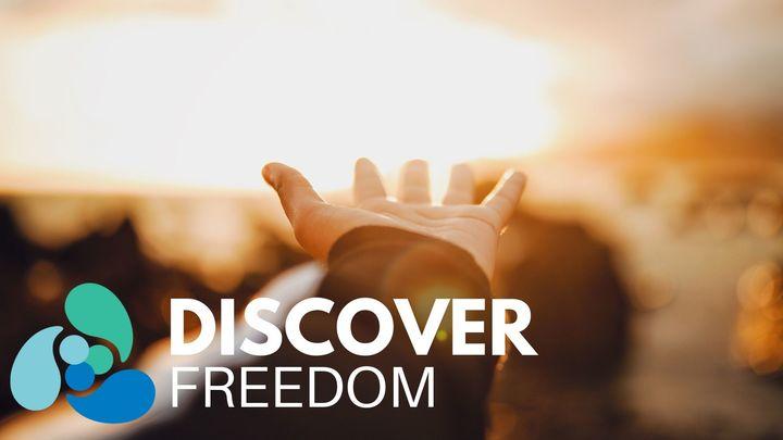 DISCOVER Freedom logo image