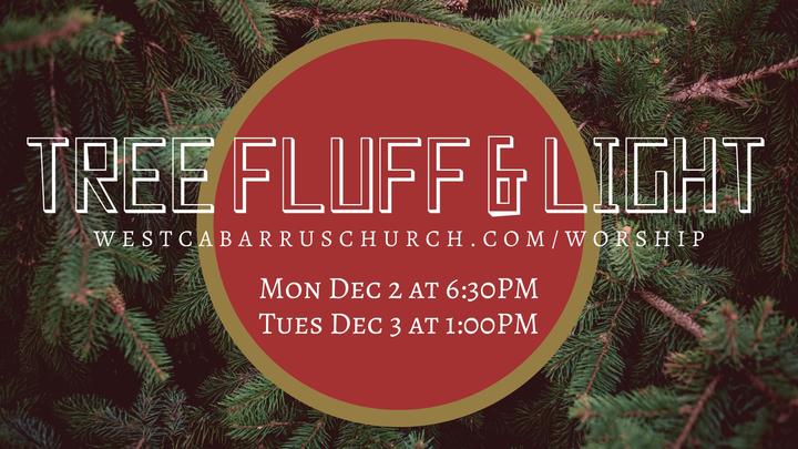 Tree Fluff & Light logo image