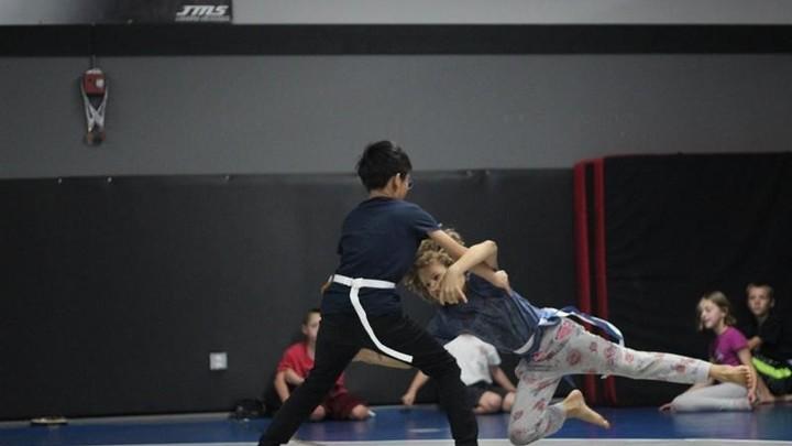 Reality Sports Martial Arts logo image