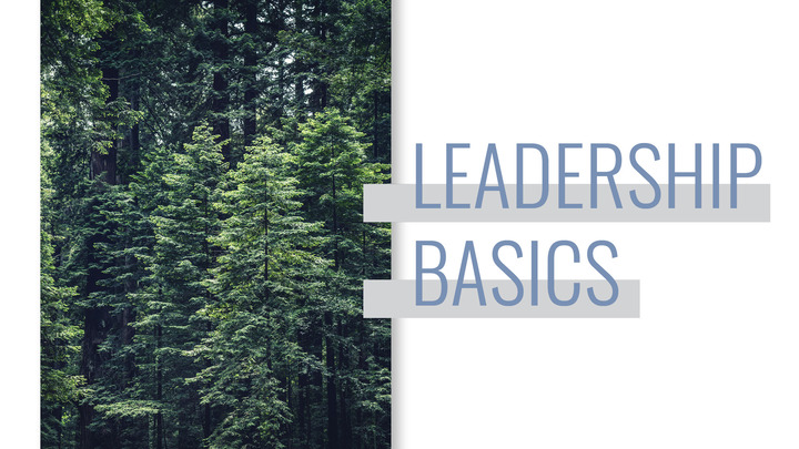 Leadership Basics | Community Group Shepherds Training logo image