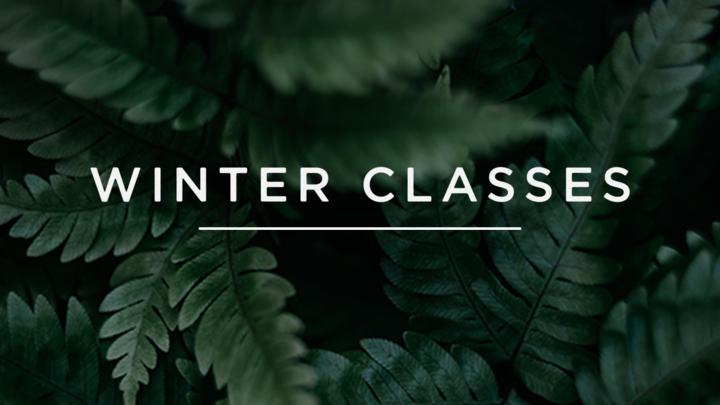 Parenting | Winter 2020 Class logo image