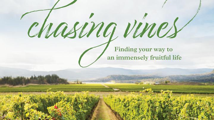 Chasing Vines - Beth Moore Study logo image