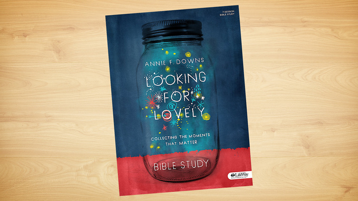 Looking for Lovely by Annie Downs logo image