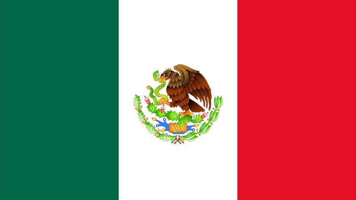 Mexico Partnership logo image